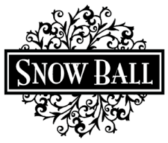 2020 Snow Ball Dance