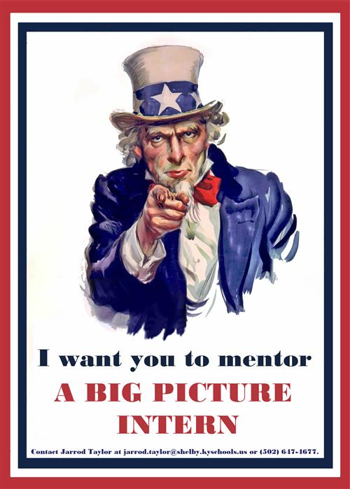 Big Picture Students Looking for Mentors